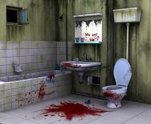 21 bathroom1